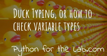 Duck typing, or how to check variable types